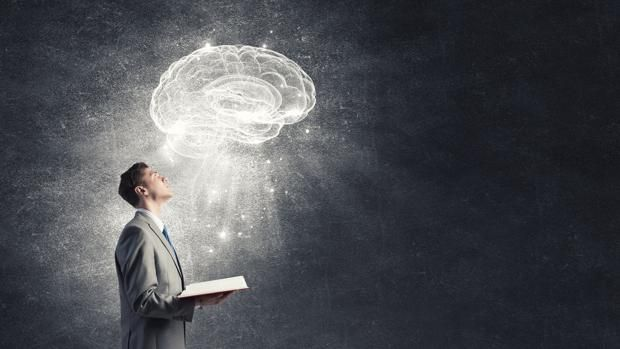 cerebro-lectura-knWB--620x349@abc